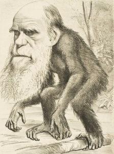 Charles Darwin caricature